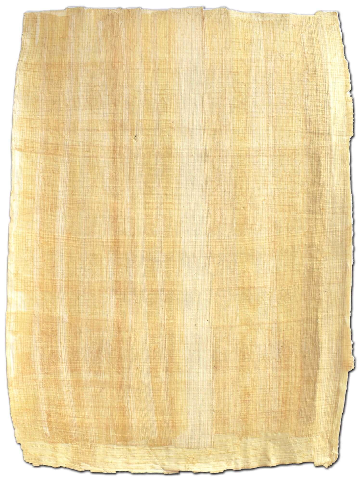 papyrus-papyrusblatt-naturrand