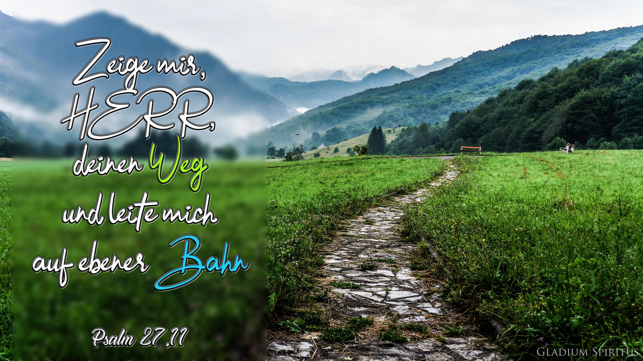 Psalm 27,11