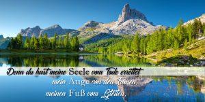 Psalm 116.8-169